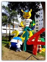 Copa do Mundo de Futebol - 2014 - Brasil