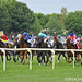Modesty Handicap cavalry charge