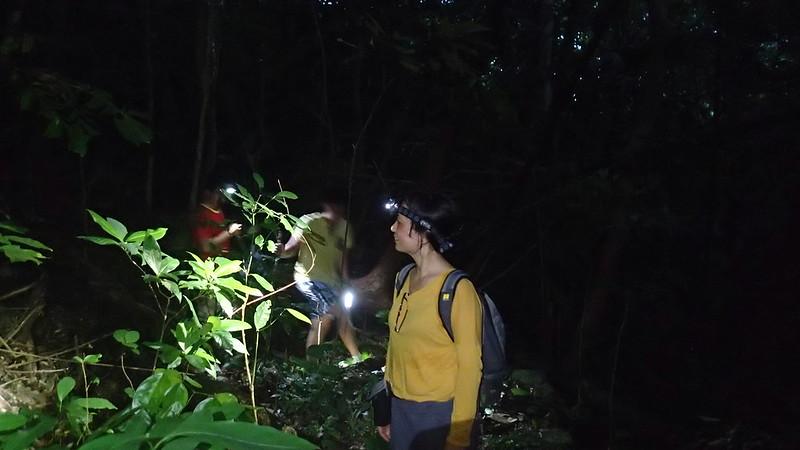 Vượt rừng trong  đêm để đến bãi Sạn trước khi rùa đẻ