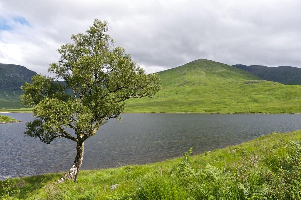 By Loch Dochard