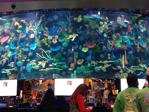 Commercial Aquatic Exhibits Integrated Aqua Systems
