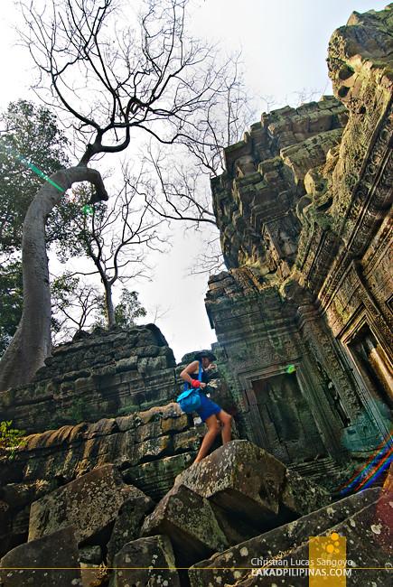 Siem Reap Cambodia Ta Phrom Temple