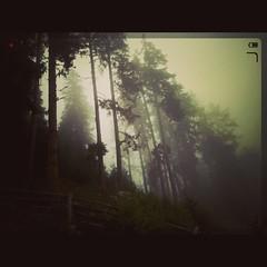 #ontopofthemountain #foggyday #lumia930