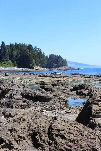 Botanical Beach 2014