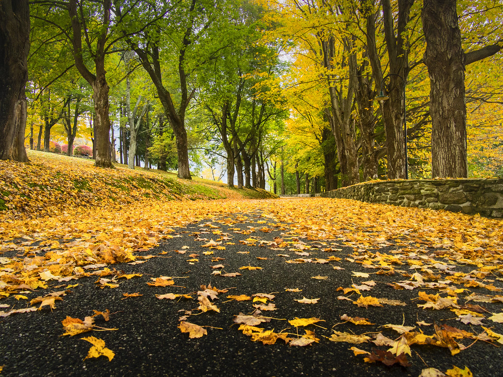 10 Fall Destinations to See the Leaves Change Color