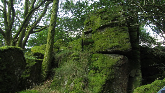 Little Combe Tor