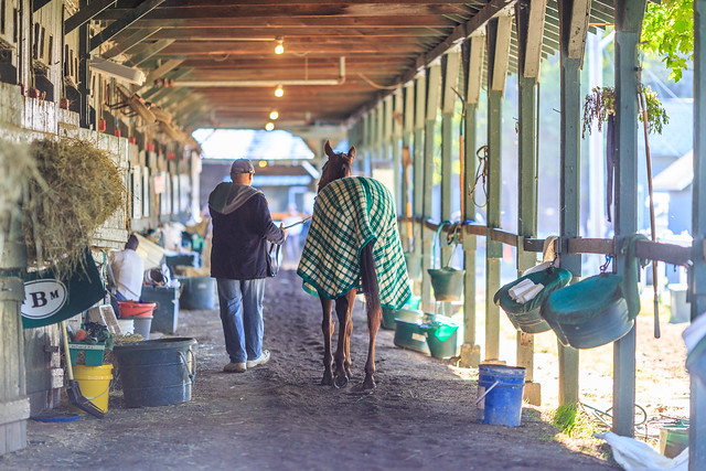 A Walk Through the Back Stretch Stables