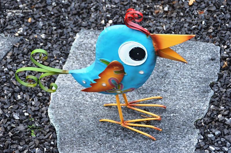 Beware the bird