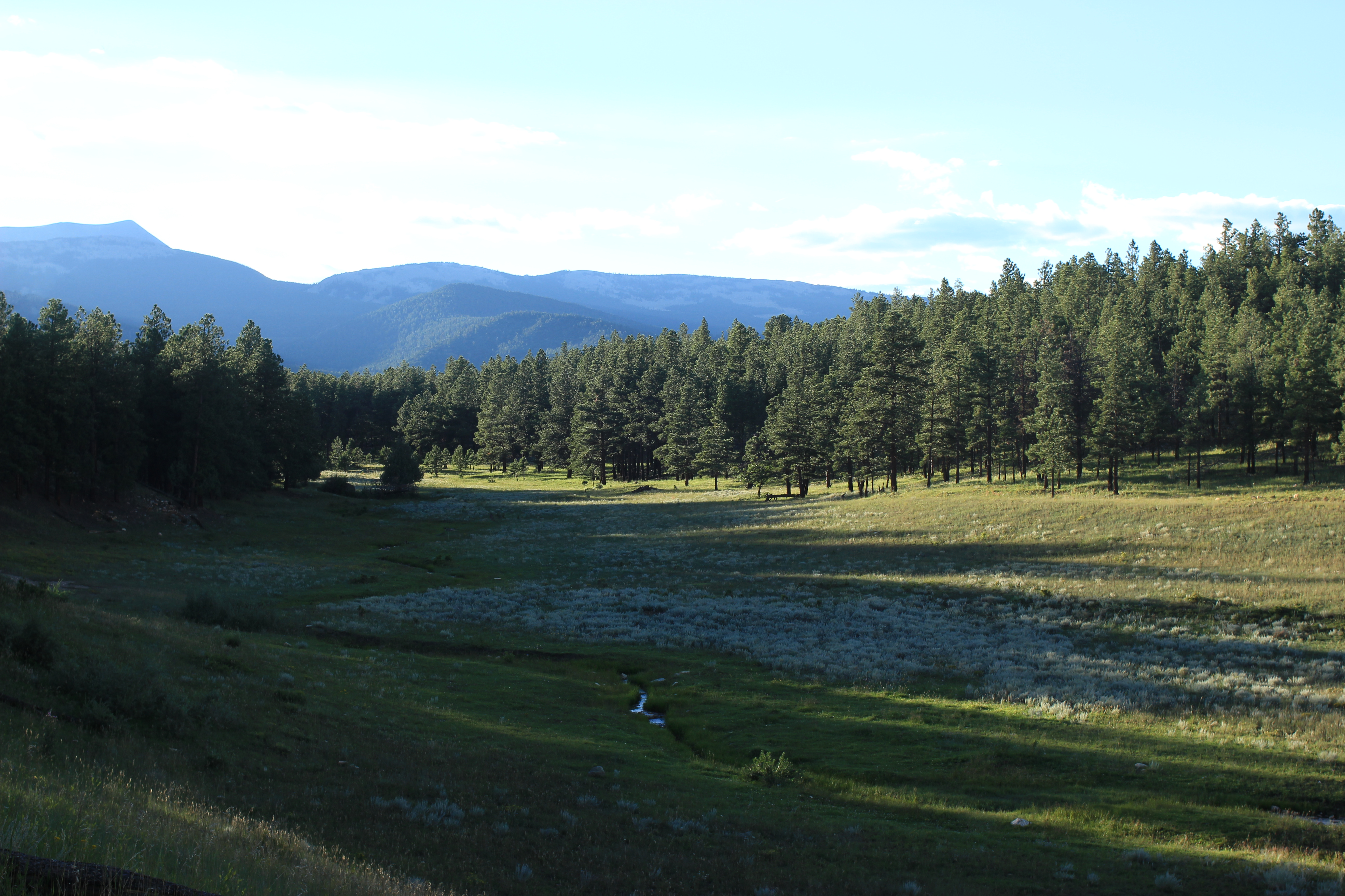 Elevation of Little Costilla Peak, New Mexico, USA ...
