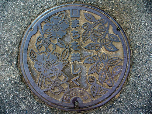 Nakayama Tottori, manhole cover (鳥取県中山町のマンホール)