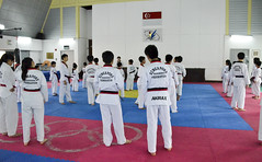 striking combat sports(1.0), individual sports(1.0), contact sport(1.0), taekwondo(1.0), sports(1.0), tang soo do(1.0), combat sport(1.0), martial arts(1.0), karate(1.0), black belt(1.0),