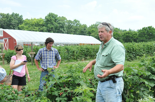 Wade Butler talks about how drip irrigation system benefits black raspberries on his farm.