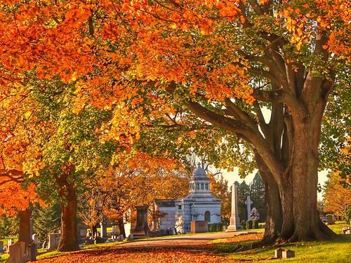 Autumn Splendor Everywhere