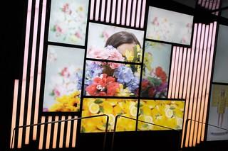Image of Jean Drapeau. legrandsaut valléeduhamel mosaïque écran écrans mosaiquedécrans placedesarts mosaïquepda montreal montréal mtlenarts public publicspace publicart mosaiquepda allfreepictures bestof2016