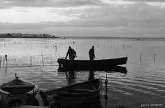 Pescatori #2