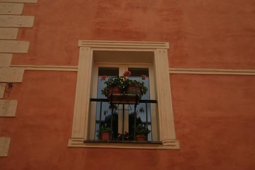 Camerino: finestra fiorita
