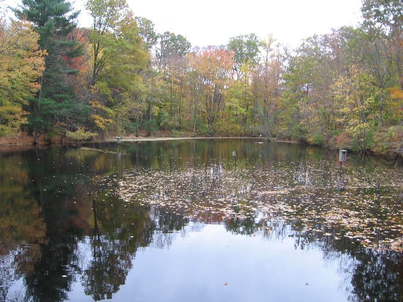 Audubon Autumn