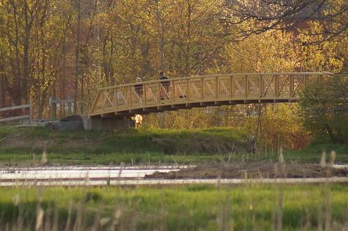 bridge spring footbridge minersmarsh