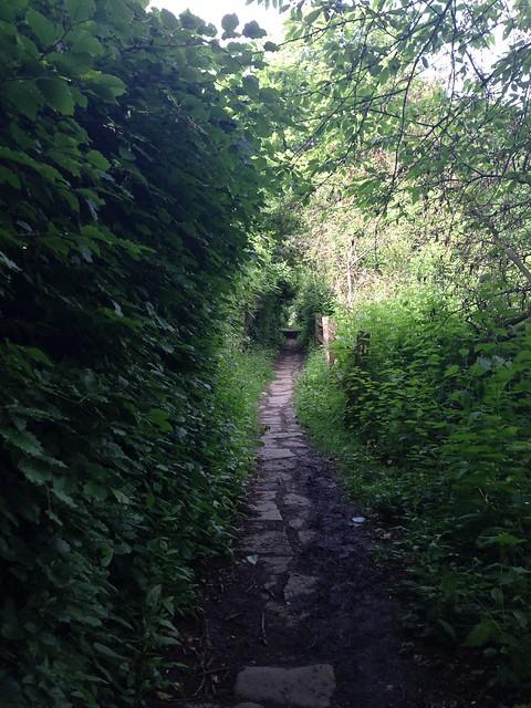 SWC Walks Book 3 Walk 80 Staplehurst to Headcorn