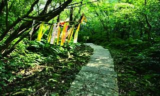 五分山步道海,登山社的布條有如「招魂旗」。(圖片來源:台灣千里步道協會)