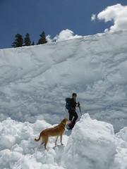 adventure, individual sports, winter, sports, recreation, snow, outdoor recreation, mountaineering, ice, ski touring, extreme sport, ski mountaineering,