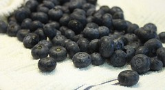 3 dry blueberries