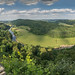 Symonds Yat Rock Panorama by Matt Wilde