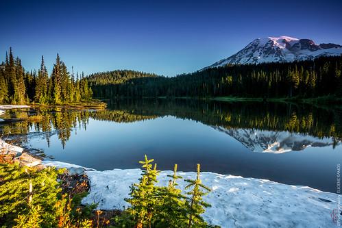 Reflection Lake, Mt. Rainier, WA
