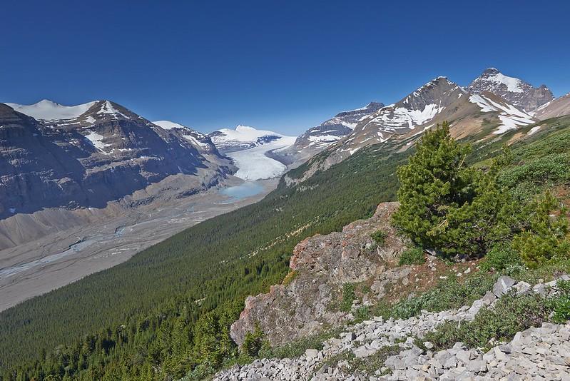 View from Parkers Ridge Trail on the Saskatchewan Glacier - Banff National Park