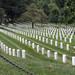 Arlington National Cemetery 01 by Vinicius Portelinha