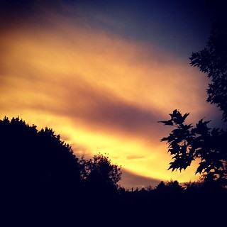 Beautiful cloudy sky tonight #sunset #sky #clouds #newengland #newhampshire #summer #evening #trees #picofday