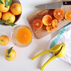meal(0.0), breakfast(0.0), apricot(0.0), plant(0.0), clementine(1.0), orange(1.0), citrus(1.0), orange(1.0), lemon(1.0), yellow(1.0), produce(1.0), fruit(1.0), food(1.0), juice(1.0), tangerine(1.0), mandarin orange(1.0),