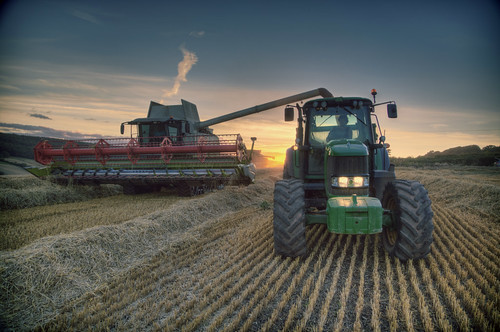 sunset rural evening farming harvest straw devon agriculture wheatfield ashcombe hss tractorandtrailer unloadingwheat claaslexion580 claascombineharvester sliderssunday