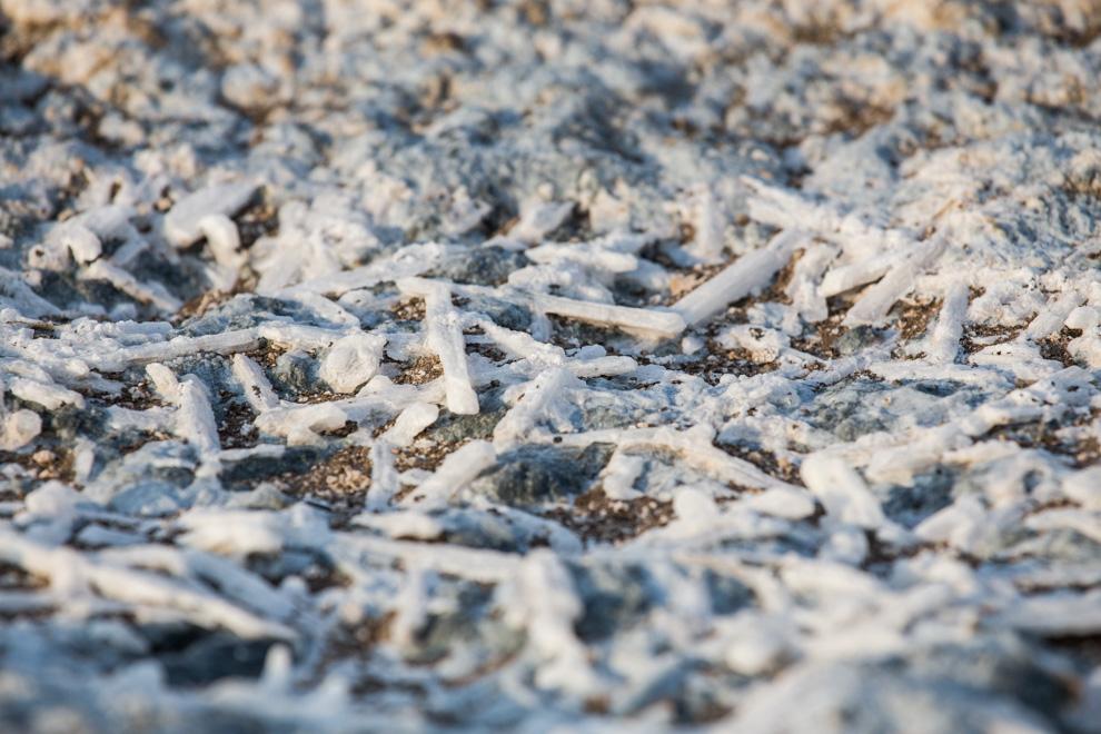 Trozos de sal pueden verse en el suelo en las cercanías de las lagunas del Chaco. (Antonio Tang)