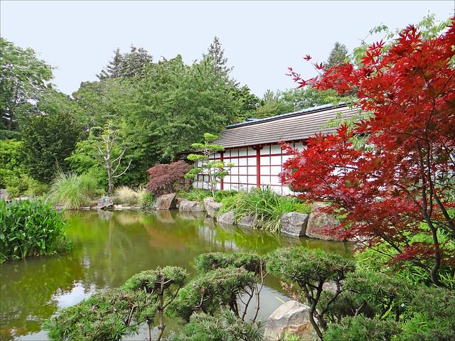 Le jardin japonais le de versailles nantes flickr for Jardin de versailles