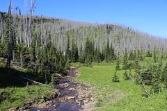 flattop_mountain_2014-07-26_023