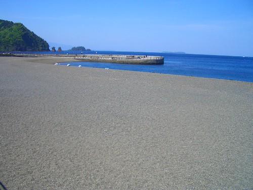 伊東 イルカが浜