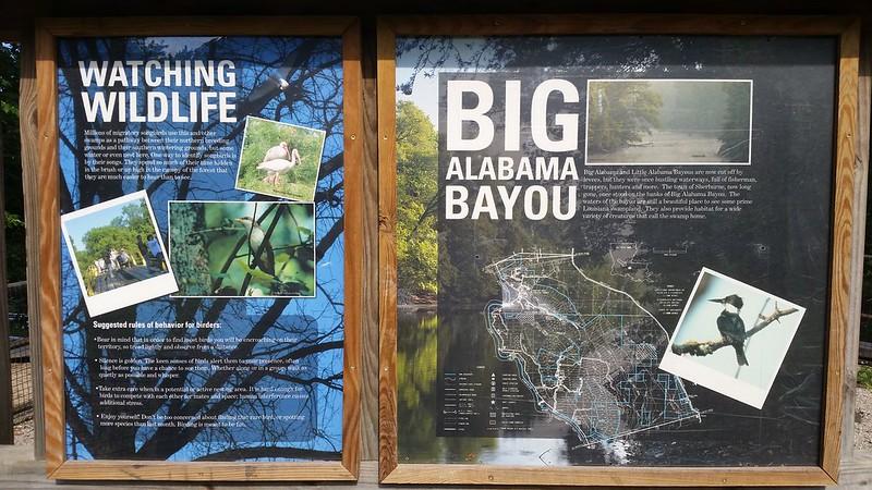 Big Alabama Bayou