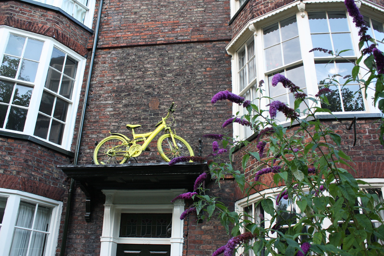 York yellow bike