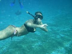 underwater diving, swimming, sports, sea, recreation, outdoor recreation, water sport, underwater, freediving,