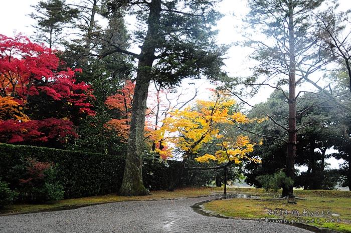 2013修學院離宮 (10).jpg