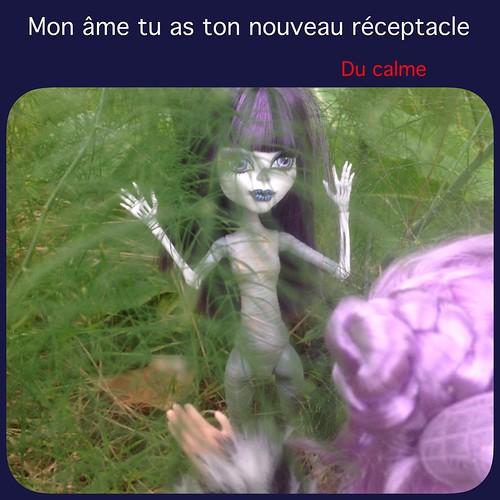 [ famille Mortemiamor ] tranches de vie - Page 68 14887289849_4464486cde