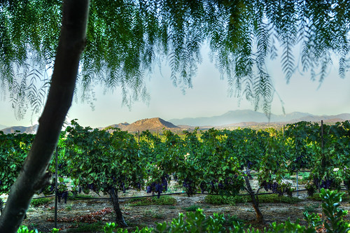 california sunset coast landscapes vineyard south winery temecula hdr