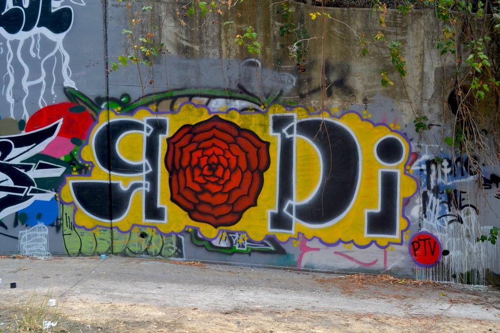 RODI, BELLA, Graffiti, eastbay, PTV, Punks Thugs and Vandals