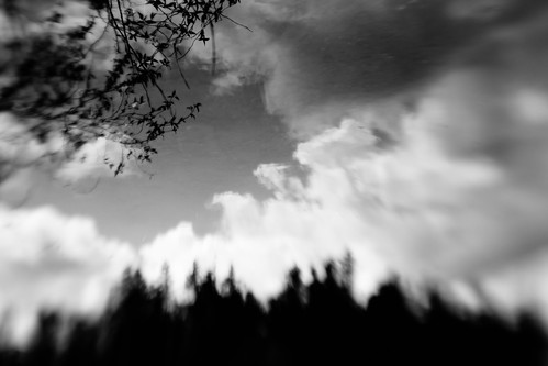 trees sky blackandwhite abstract blur reflection lensbaby clouds washington pacificnorthwest canoneos5dmarkiii
