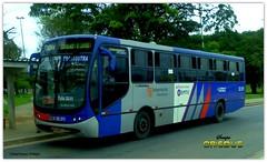 32.511 Transdutra - Busscar Urbanuss Pluss - Mercedes Benz OF-1721