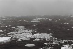 Antarctica Lost Film (4)