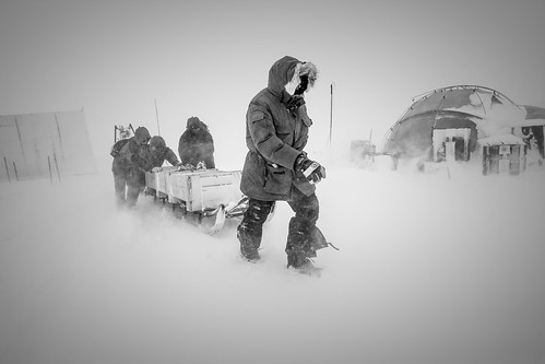 Notre Patrimoine Polaire***Our Polar Heritage