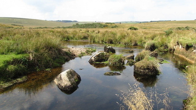 Blackbrook River