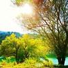 #lake #landscape #nature